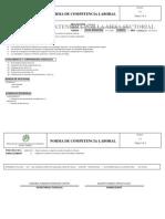 260201005_1 Normas de Competencia Laboral