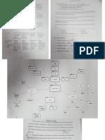 Work Sample InTASC 6