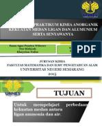 Prak.kimia Anorganik