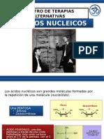 Presentacion Acidos Nucleicos --Pnie