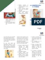 RHB-DO-490-003 Plan Casero La Audicion de 6 a 12 Meses v0