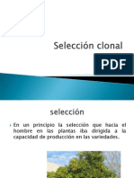 Seleccion_clonal Expzzzo Fitome