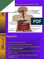 Gastro Intestibal Tract