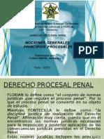 Principios Del Proceso Penal_exp. Rich Imprimir
