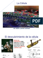 Fisiologia Celular 3_ Semana