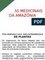 Plantas Medicinais - Metabólitos Secundários