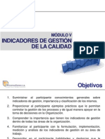 Manual Indicadores de Gestion