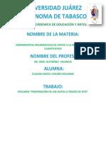 Resumen Equipo 9 PDF