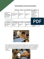 Testing du rond pronateur et du carré pronateur
