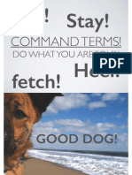 command terms slides