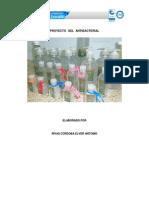 Proyecto Gel Antibacterial