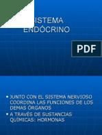 14 Sistema Endócrino