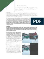 Spanish_Homonymous_hemianopia.pdf