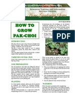 How to Grow Pakchoi