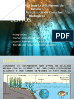 Bentos Exposición Ecosistemas Acuaticos