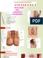 SEMIOLOGIA DEL APARATO FEMENINA PPT.pptx