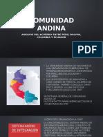 Comunidad Andina - PPT