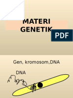 Mater i Gene Tik