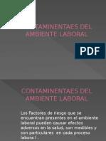 Expo Factores de Riesgos Contaminantes Del Ambiente