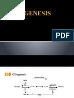 Gli Ko Genesis