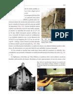 Patrimoniu 303-345 mail.pdf