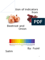 Extraction of Indicators from Beetroot and Onion CBSE Project