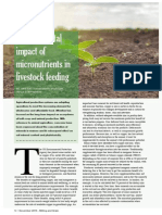 Environmental impact of micronutrients in livestock feeding