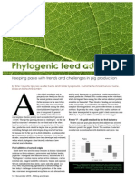 Phytogenic feed additives
