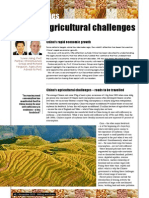 Commodities - China's agricultural challenges