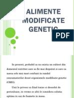 Alimente Modificate Genetic