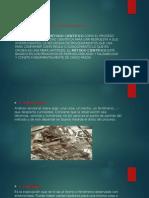 Metodo Cientifico y Partes de Un Ensayo