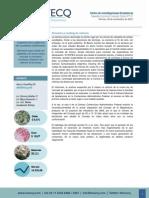 Informe Necesidad Coherencia Fiscal