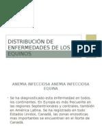Distribución de Enfermedades de Los Equinos