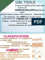Anatomy - tissue.pptx