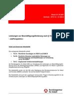 arbeitshilfe-zu-p16a-sgb-ii