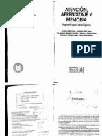 Atencion Aprendizaje Memoria