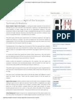 Nissim Ezekiel's Night of the Scorpion_ Summary & Analysis _ ILU English