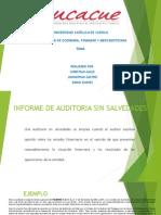 Audit Informes