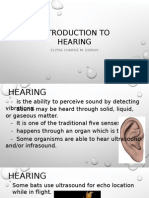 Acoustics Report - Copy.pptx