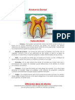 DENTAL-ISOLI-NA.docx