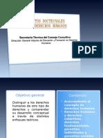Presentación Concepto y Fundamentación
