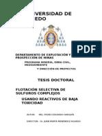 TD_pedroedgardosarquis_(1)_(1)