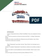 51 - Teologia Do Novo Testamento