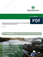 Plan de Acción de Biocombustibles Proyecto Etapa 2