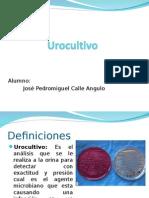 urocultivo 4