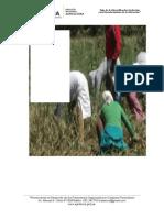 Diagnostico Agrario Locumba