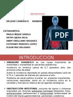 Sindromes Diarreico y Obstructivo