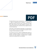 todosobreellfujodecaja-130830165958-phpapp02.pdf