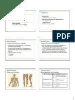 2-4 Summary Biopotential
