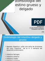 Histofisiología Del Intestino Grueso y Delgado